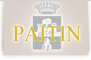 Paitin